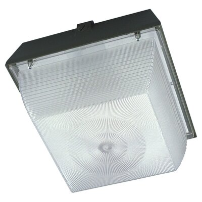 Pearce 1-Light Flush Mount