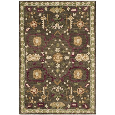 Baumgartner Hand-Tufted Sage/Cream/Green Area Rug Rug Size: Rectangle 4 x 6
