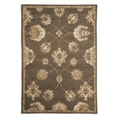 Baxter Brown Area Rug Rug Size: 8' x 10'