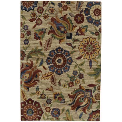 Boutell Dark Apricot/Blue Area Rug Rug Size: Rectangle 96 x 1211