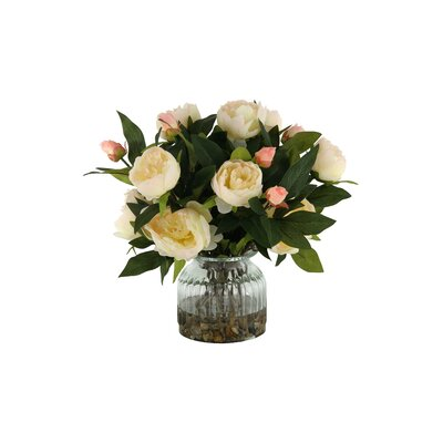 Peonies in Glass Vase Color: Cream DBHC6260 27711907