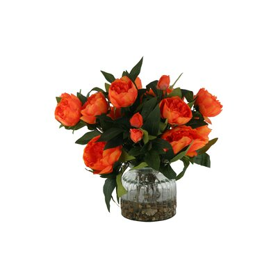 Peonies in Glass Vase Color: Orange DBHC6260 27711903