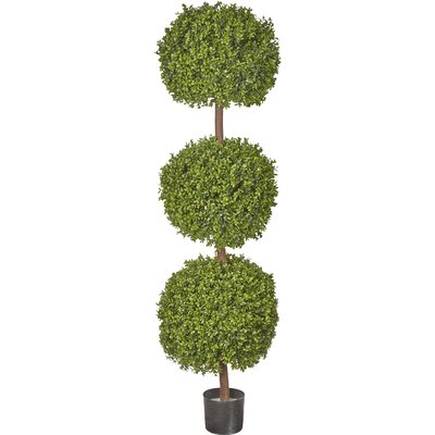 Boxwood Triple Ball Tree Round Topiary in Pot