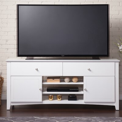 Pinckney TV Stand with Adjustable Shelves