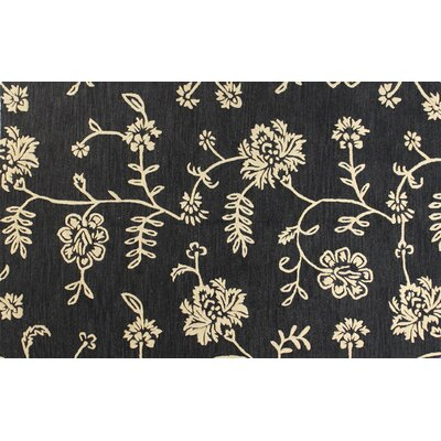 Riegelsville Hand-Tufted Black Area Rug Rug Size: 36 x 56