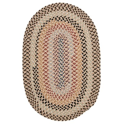 Shoshana Area Rug Rug Size: Rectangle 2 x 4