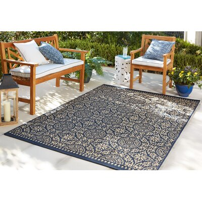 Harleigh Navy Indoor/Outdoor Area Rug Rug Size: 53 x 76