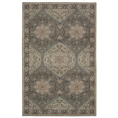 Worthville Farsa Gray Area Rug Rug Size: Rectangle 53 x 710