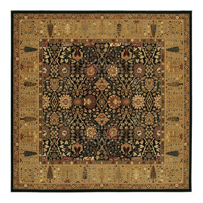 Edwards Red Area Rug Rug Size: Square 66