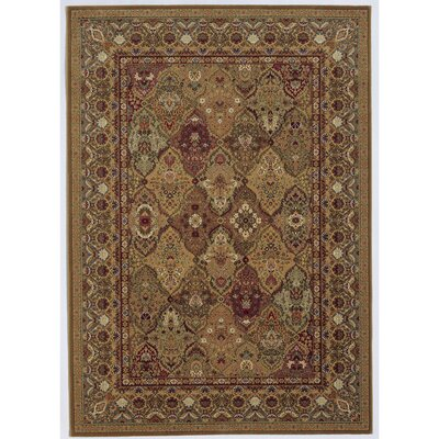 Edwards Hazelnut Area Rug Rug Size: 53 x 76