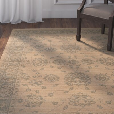 Cortes Oriental Gray Area Rug Rug Size: Rectangle 3'10