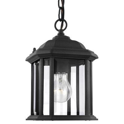 Burtt 1-Light Outdoor Hanging Lantern