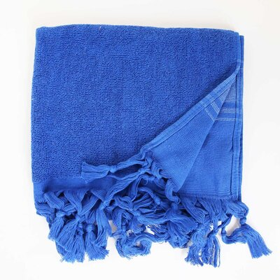 Hudgens Hand Towel (Set of 2) Color: Blue