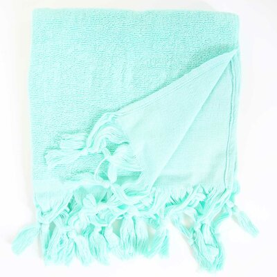 Hudgens Hand Towel (Set of 2) Color: Aqua