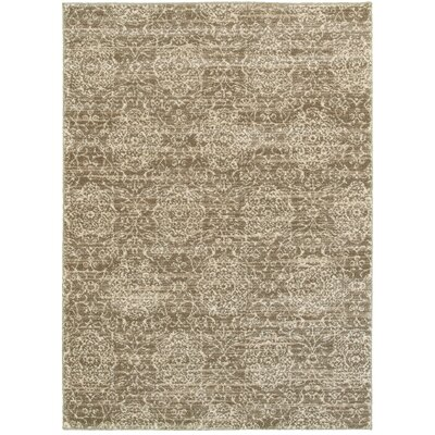Driscoll Dark Beige/Cream Rectangle Indoor Area Rug Rug Size: Rectangle 8 x 10