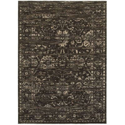 Driscoll Brown/Dark Beige Indoor Area Rug Rug Size: Rectangle 9 x 12