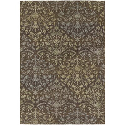 Ridgway Brown Indoor/Outdoor Area Rug Rug Size: 53 x 76