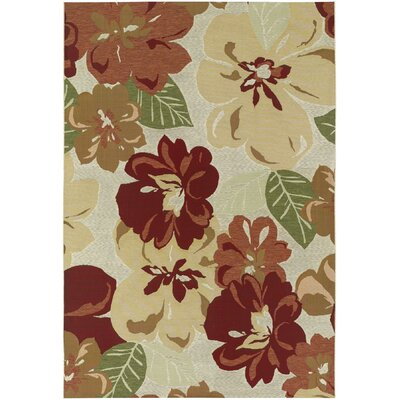 Ridgway Rose Bud Novella Indoor/Outdoor Area Rug Rug Size: 53 x 76