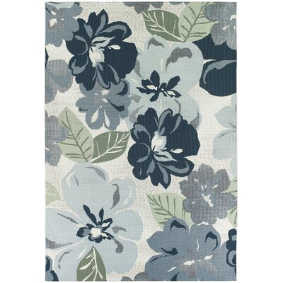 Dimmick Blue Indoor/Outdoor Area Rug Rug Size: 53 x 76