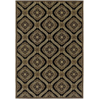 Ridgway Black/Green Napoli Indoor/Outdoor Area Rug Rug Size: Rectangle 4 x 510