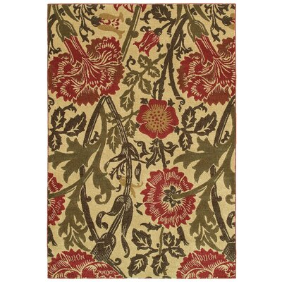 Alonza Florals Indoor/Outdoor Area Rug Rug Size: 9'9