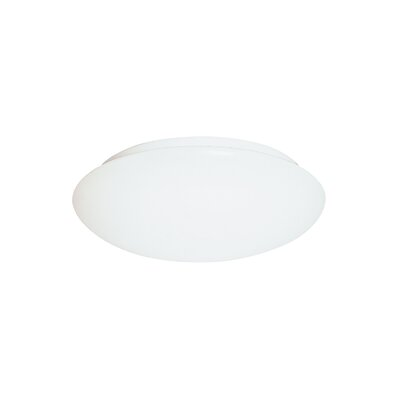 Buxton 1-Light Flush Mount