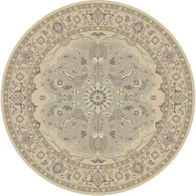 Bargamin Classic Grey/Mocha Area Rug Rug size: Round 8