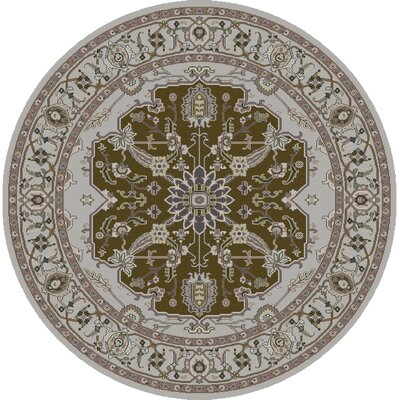 Bargamin Classic Olive/Ivory Area Rug Rug size: Square 8