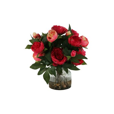 Peonies in Glass Vase Color: Burgundy / Pink DBHC6260 27711902
