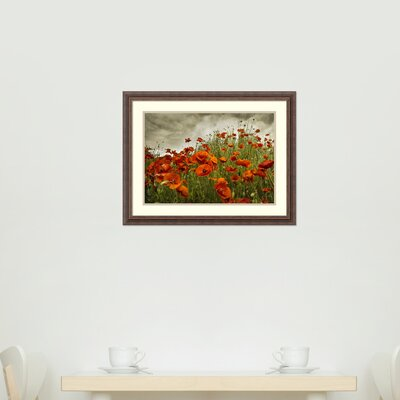 Bobbi's Poppies Framed Photographic Print