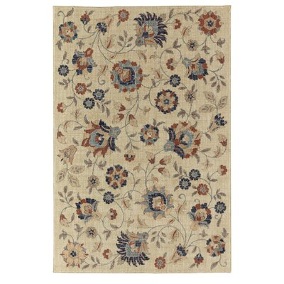 Phillipsburg Beige/Orange Area Rug Rug Size: 5 x 8