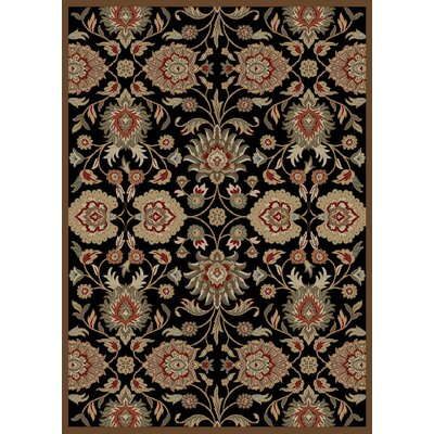 Anna Viola Black Area Rug Rug Size: Rectangle 8 x 10