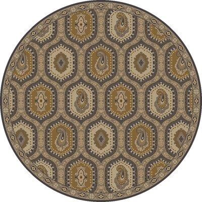 Edgington Bernfel Dark Khaki Area Rug Rug Size: Round 8
