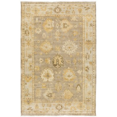 Sandy Gray/Tan Area Rug Rug Size: 56 x 86
