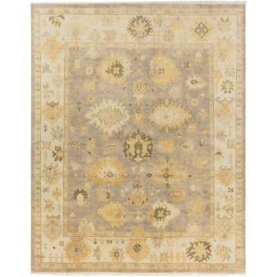 Sandy Gray/Tan Area Rug Rug Size: Rectangle 36 x 56