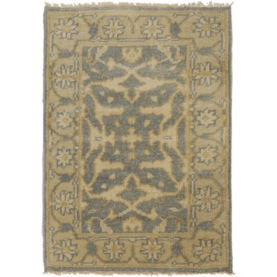 Bayles Beige Area Rug Rug Size: Rectangle 2 x 3
