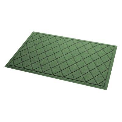 Aqua Gretchen Argyle Doormat Color: Light Green