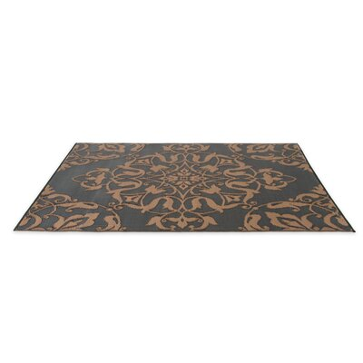 Tammie Reversible Indoor/Outdoor Doormat Rug Size: 5 x 8, Color: Black/Brown