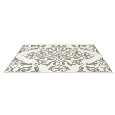 Tammie Reversible Indoor/Outdoor Doormat Rug Size: 4 x 6, Color: Cool Silver/White