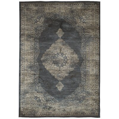 Beecroft Navy Blue/Silver Area Rug Rug Size: 5' x 8'