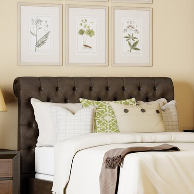 Cynthia Queen Upholstered Panel Headboard