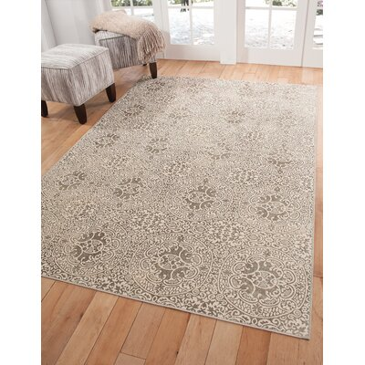 Beecroft Silver/Ivory Area Rug Rug Size: 5 x 8