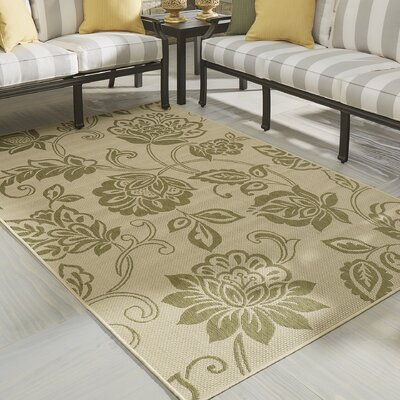 Malinda Light Green Outdoor Area Rug Rug Size: 6 x 9