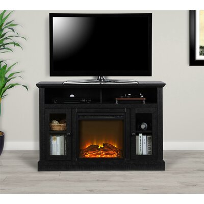 Rosier 47 TV Stand with Electric Fireplace Finish: Black