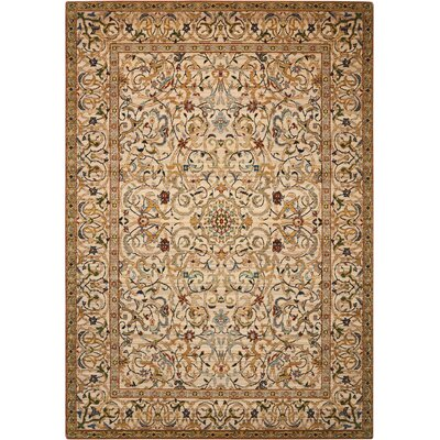Gaunt Copper Area Rug Rug Size: Rectangle 5'6