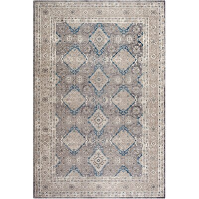 Sofia Light Gray/Beige Area Rug Rug Size: Rectangle 11 x 15