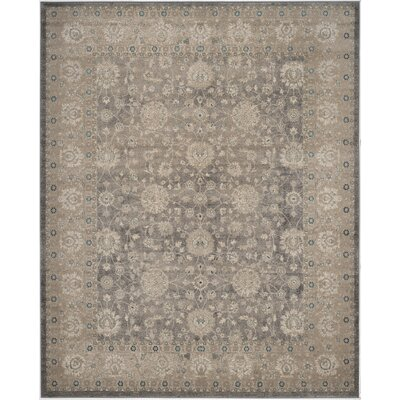 Sofia Power Loom Synthetic Beige/Gray Area Rug Rug Size: Rectangle 12 x 18