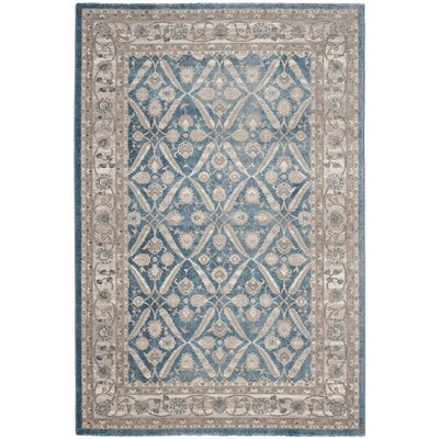Sofia Power Loom Blue/Beige Area Rug Rug Size: Rectangle 3 x 5