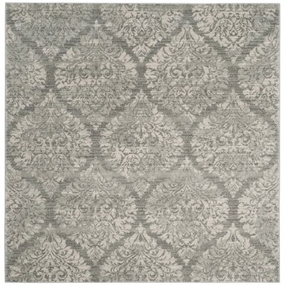 Augustus Gray/Silver Area Rug Rug Size: Square 67