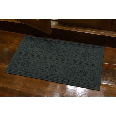 Michiel Bantry Bay Doormat Color: Evergreen